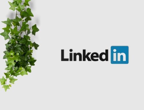 Come massimizzare l'efficacia di LinkedIn per professionisti – Guida per l'uso